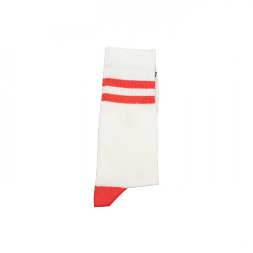 Two Stripes Coral